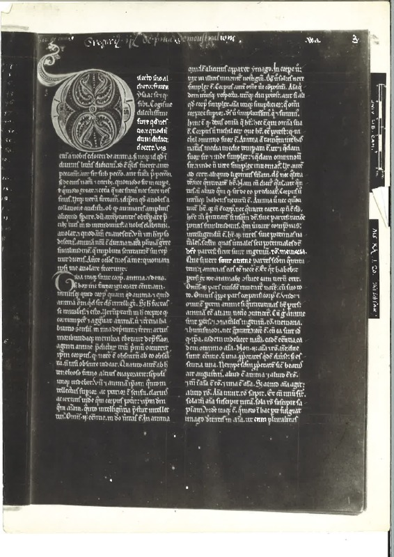 Cambridge, UL, Kk.1.20.pdf